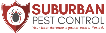 Get more knowledge about the pest control works